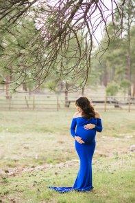 meagan-flagstaff-maternity-diana-elizabeth-photography-1192
